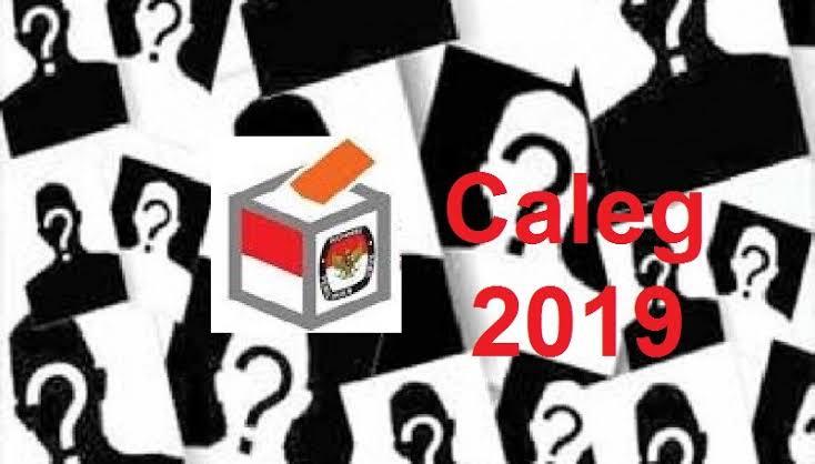 Gambar Caleg-caleg yang Mencoba Peruntungan di Tahun 2019
