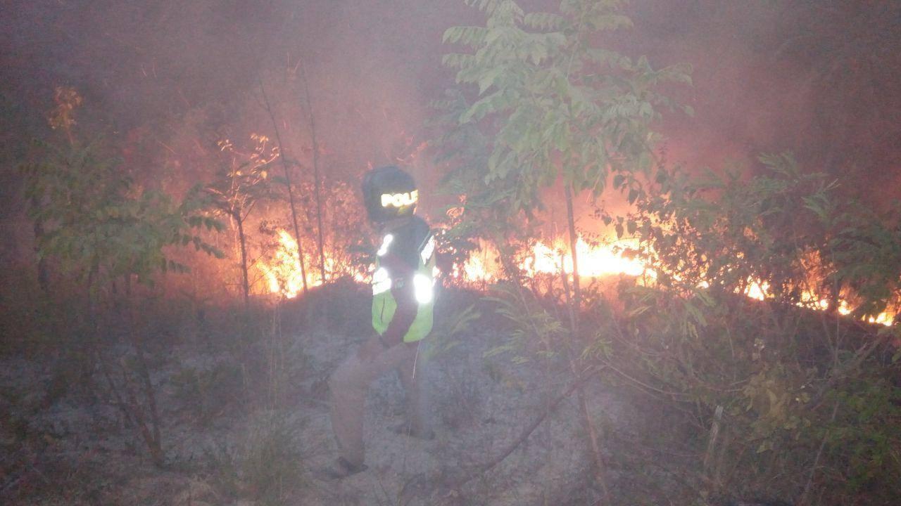 Gambar Ilalang Terbakar, Bagini Cara Polisi Padamkan Api