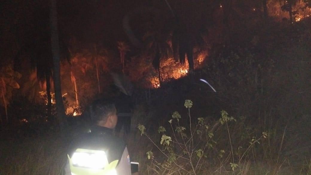 Gambar Kebakaran Lahan Kembali Terjadi di Majene