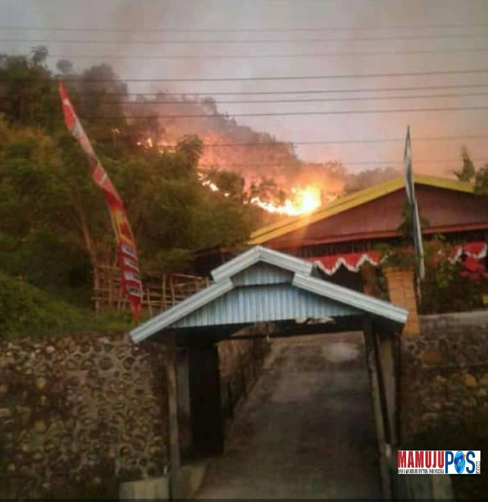 Kebakaran Lahan di Mamuju, Puluhan Rumah Warga Terancam