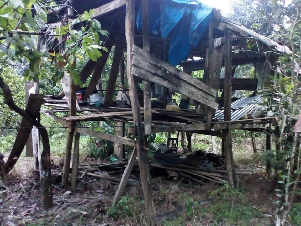 Gambar Seorang Kakek di Polman Hidup Sebatang Kara di Gubuk Reyot