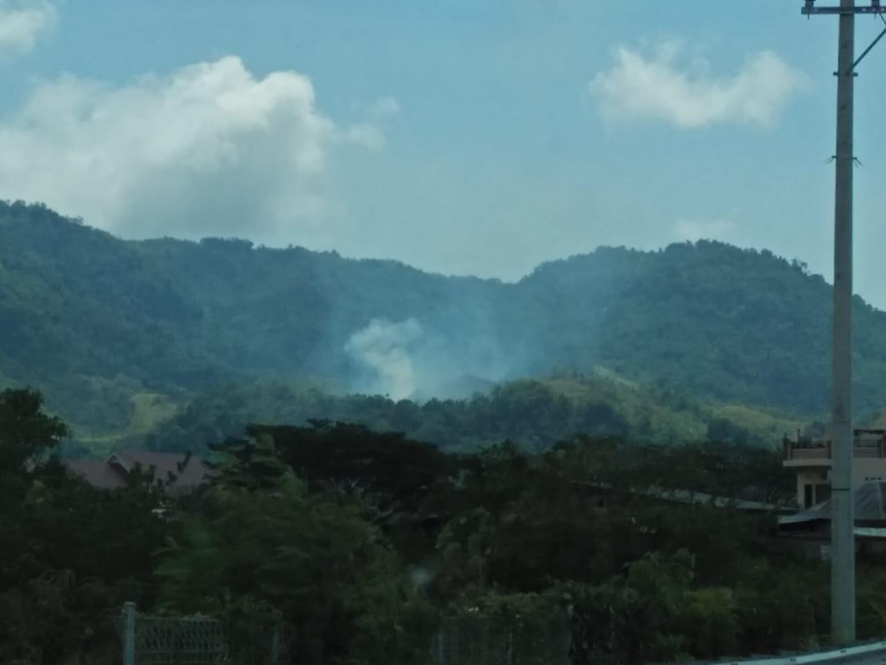 Gambar Kebakaran Hutan di Mamuju