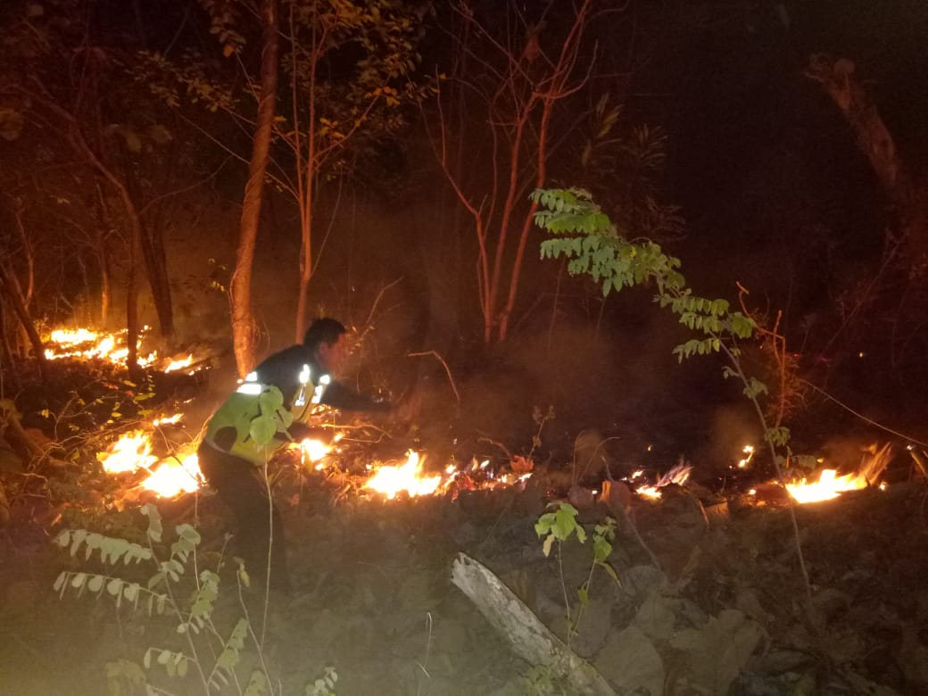 Gambar Lahan Dua Desa di Kecamatan Sendana Ludes Dilalap Api