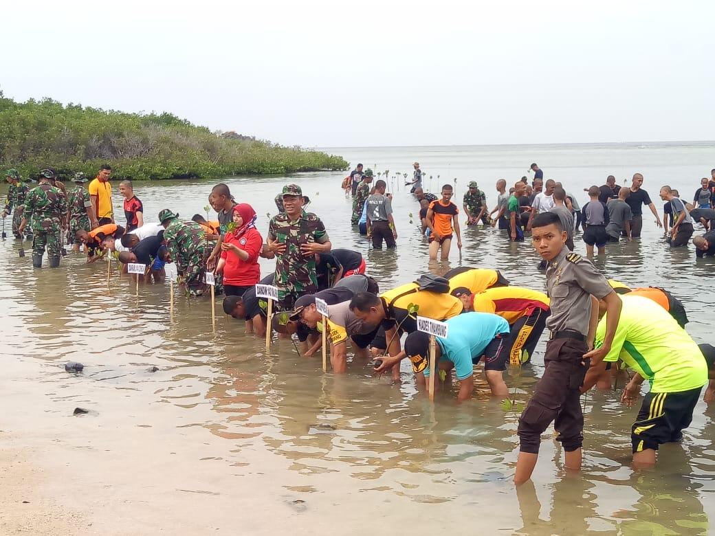 img Jaga Kelestarian Alam, TNI di Kodim Majene Tanam Mangrove Bersama Siswa