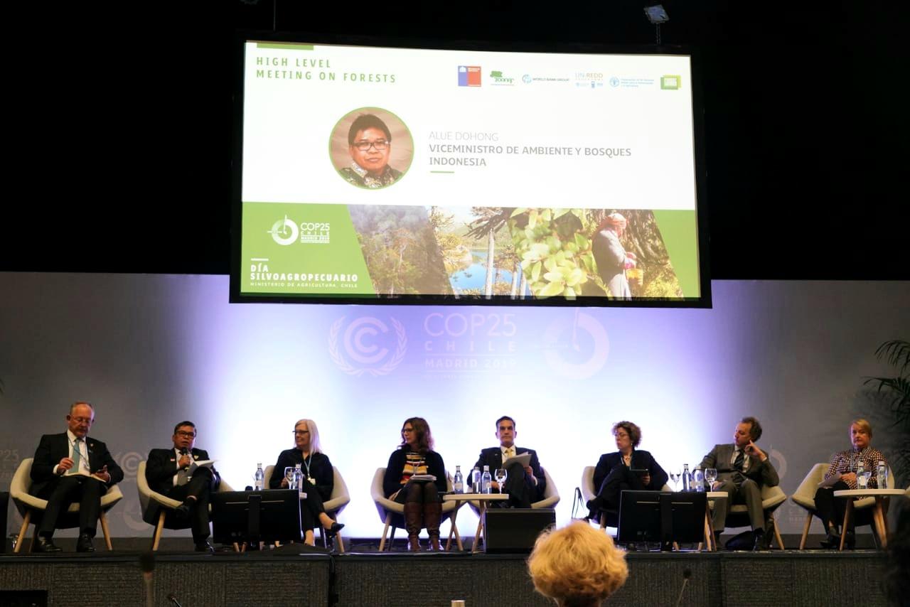 Gambar Indonesia Telah Penuhi Artikel 5 Paris Agreement untuk Hutan Lestari dan Masyarakat Sejahtera