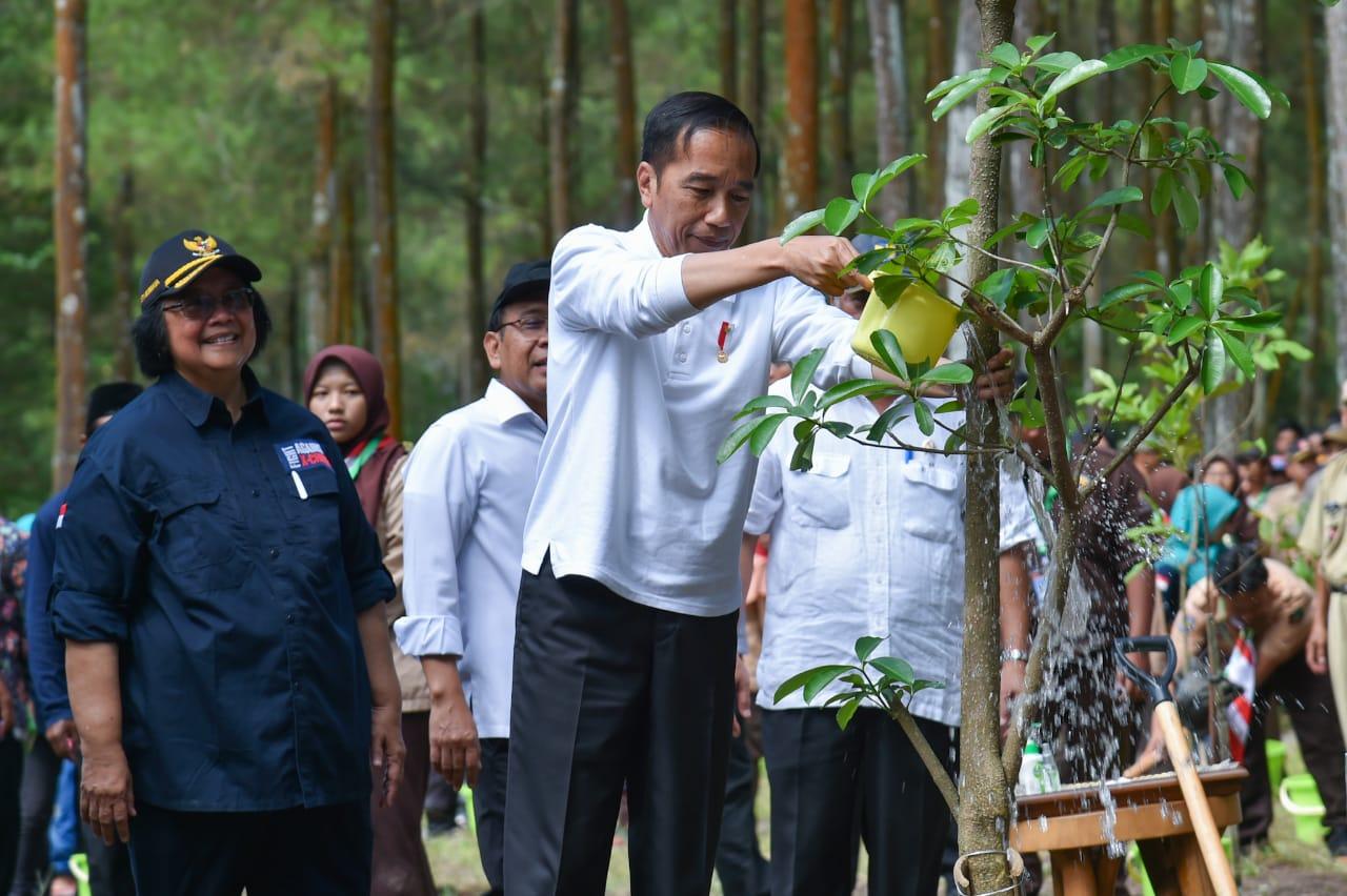 img Presiden Joko Widodo Berikan Perhatian Tinggi pada Kawasan Konservasi