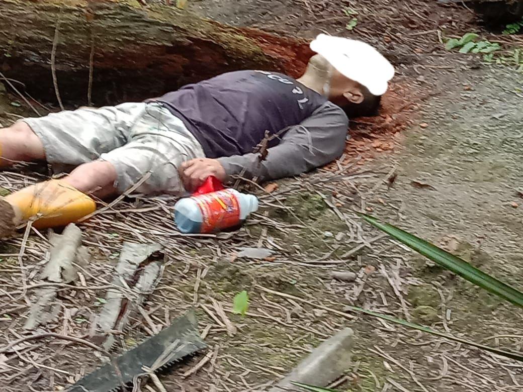 Gambar Reskrim Polres Mamuju Utara Olah TKP Penemuan Mayat di Kebun Sawit