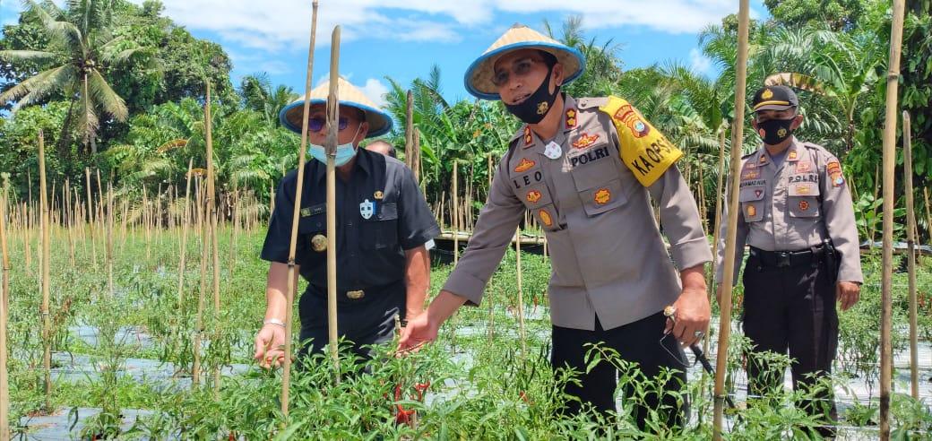 Kapolres Pasangkayu Launching Kampung Tangguh Samusena'na