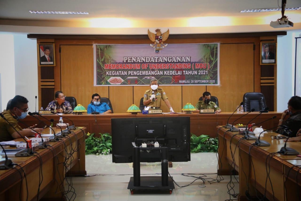 img Kembangkan Kedelai , Pemprov Sulbar – PT. Dwitunggal Nusa Mandiri Teken MoU